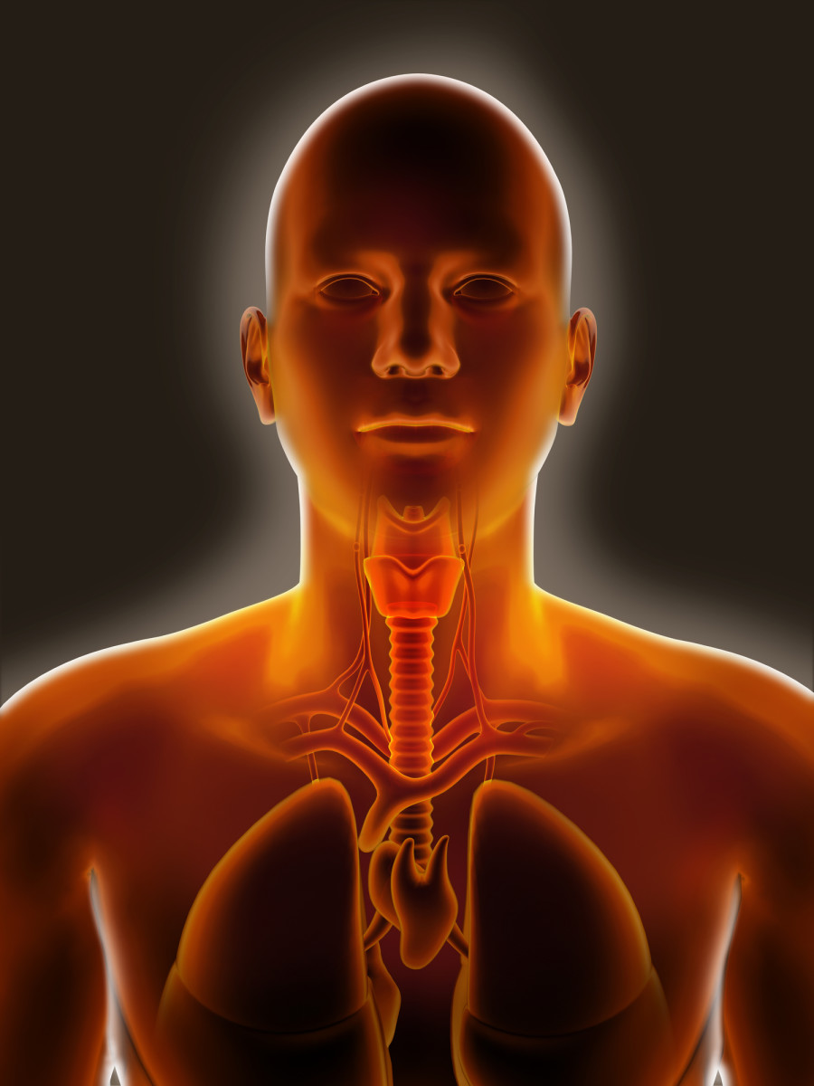Prognosis, Laboratory Investigations And General treatment Of Hypothyroidism
