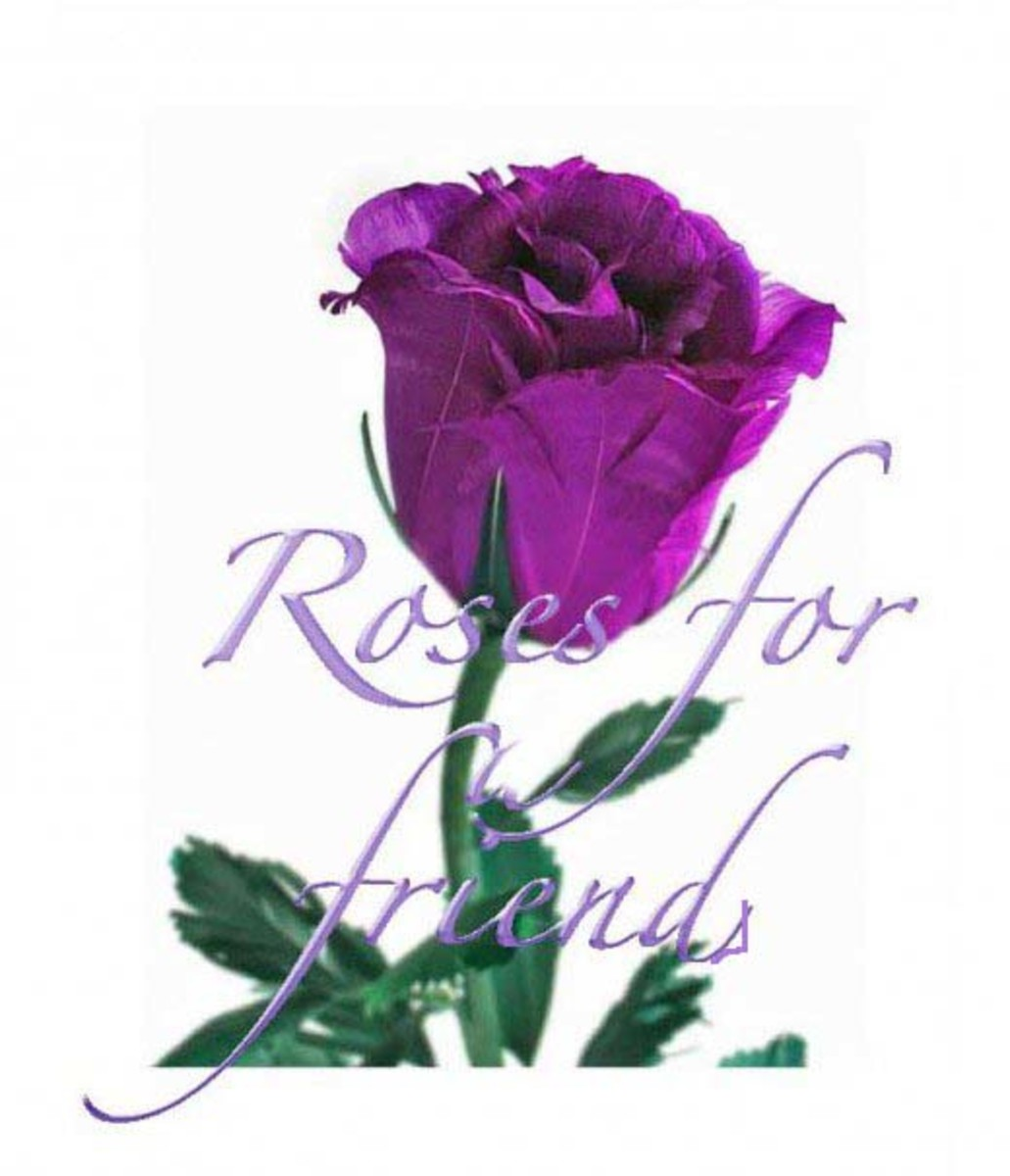 Roses For Friends