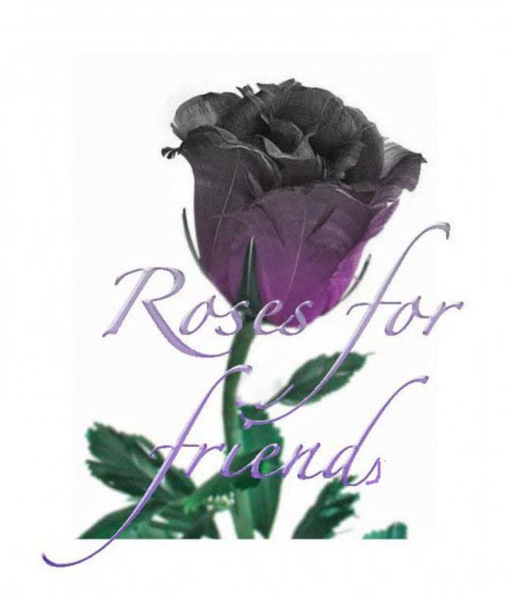 a-rose-for-a-friend