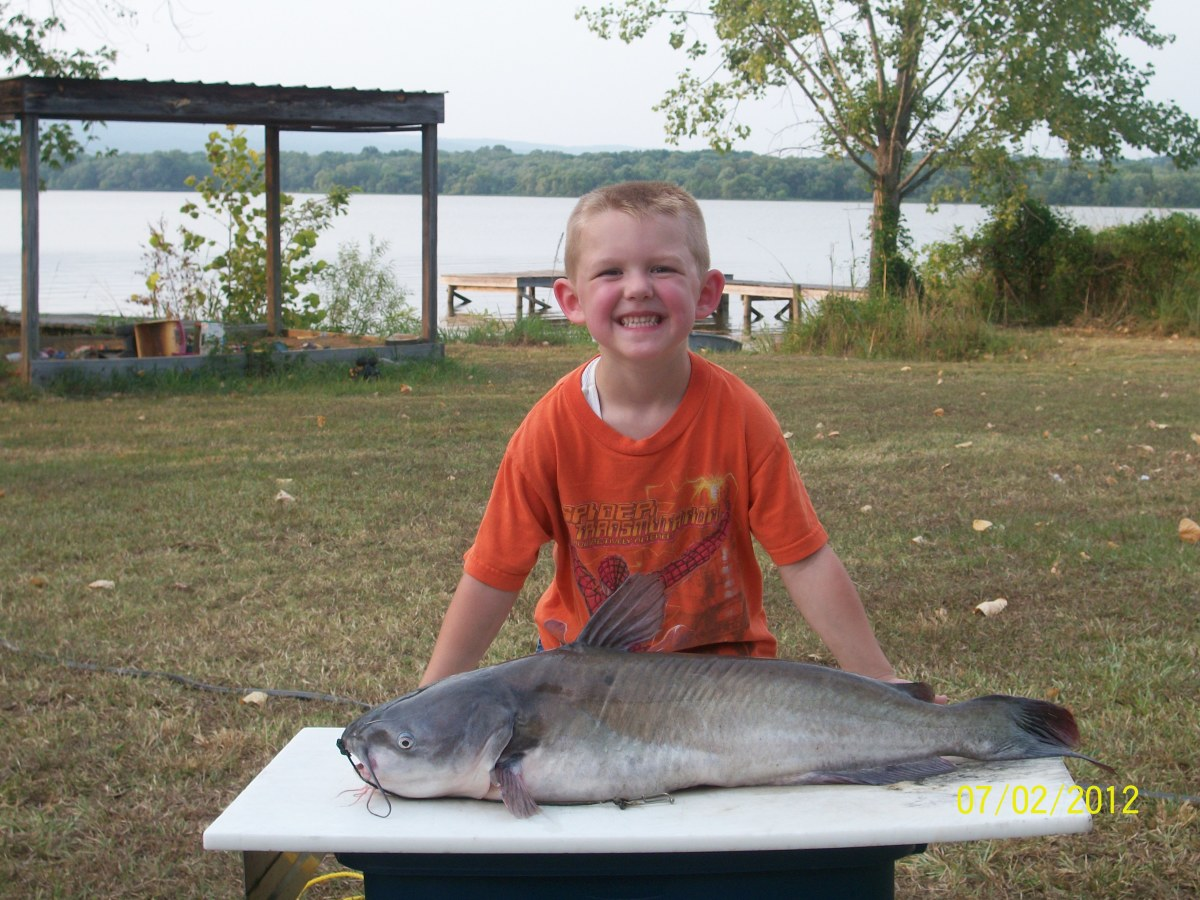 20 pound blue catfish pulled up by 5 year old boy.