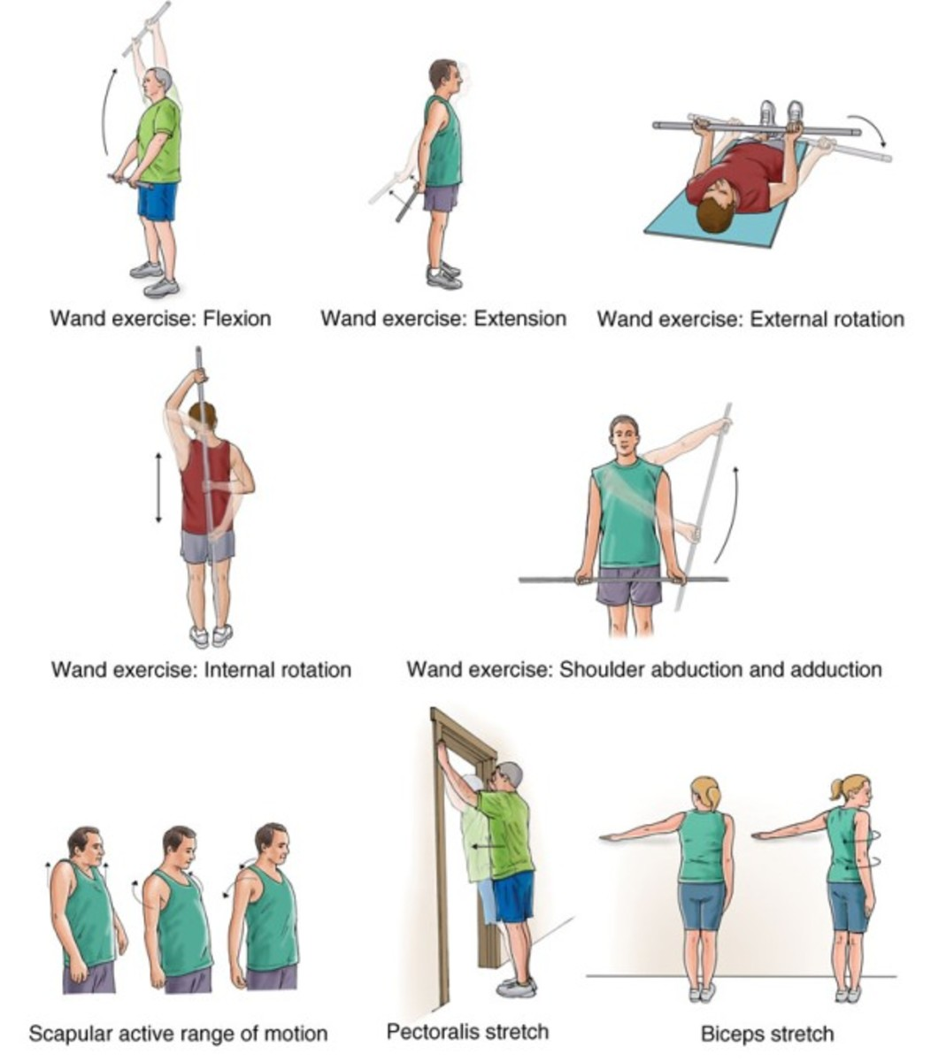 Shoulder Exercises Pictures