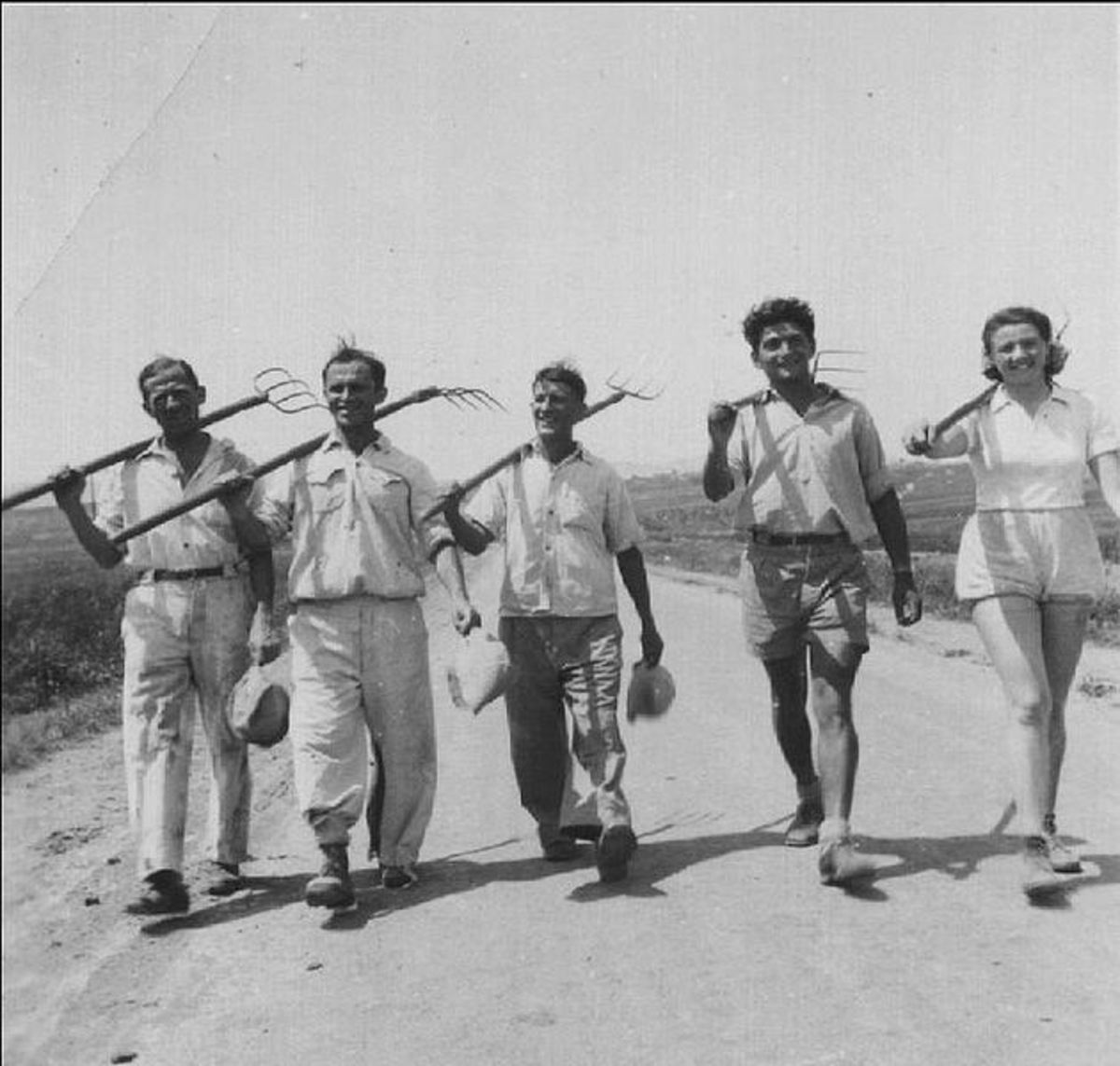 Agricultural work is of paramount importance for those reared in a kibbutz.