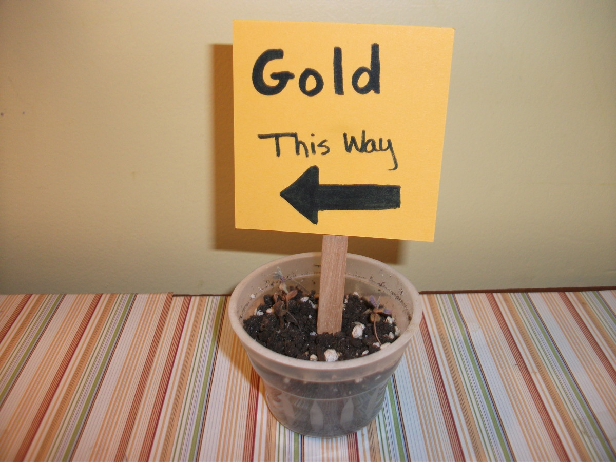 This tricky sign points the leprechaun to the gold set as bait for the trap.