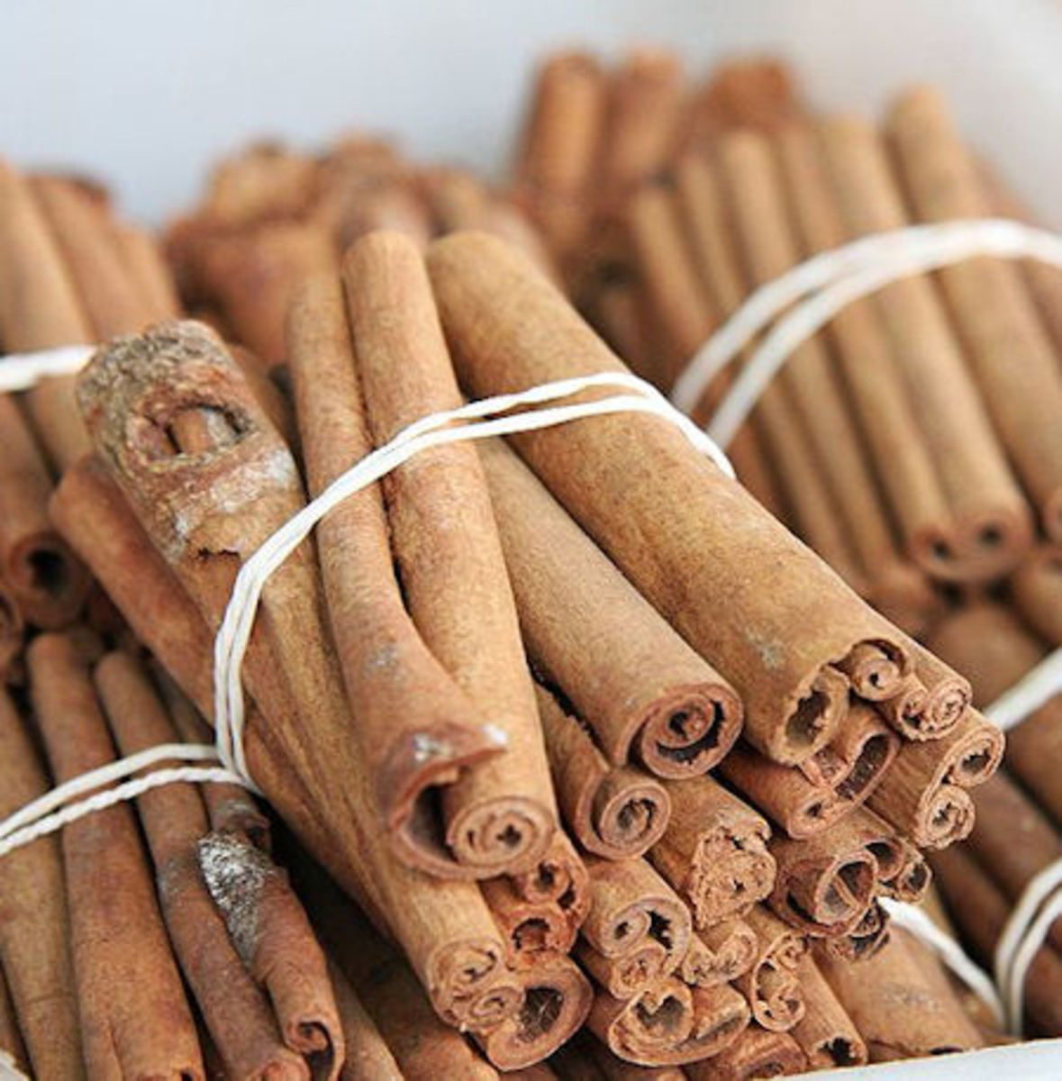 Cinnamon (Public Domain)