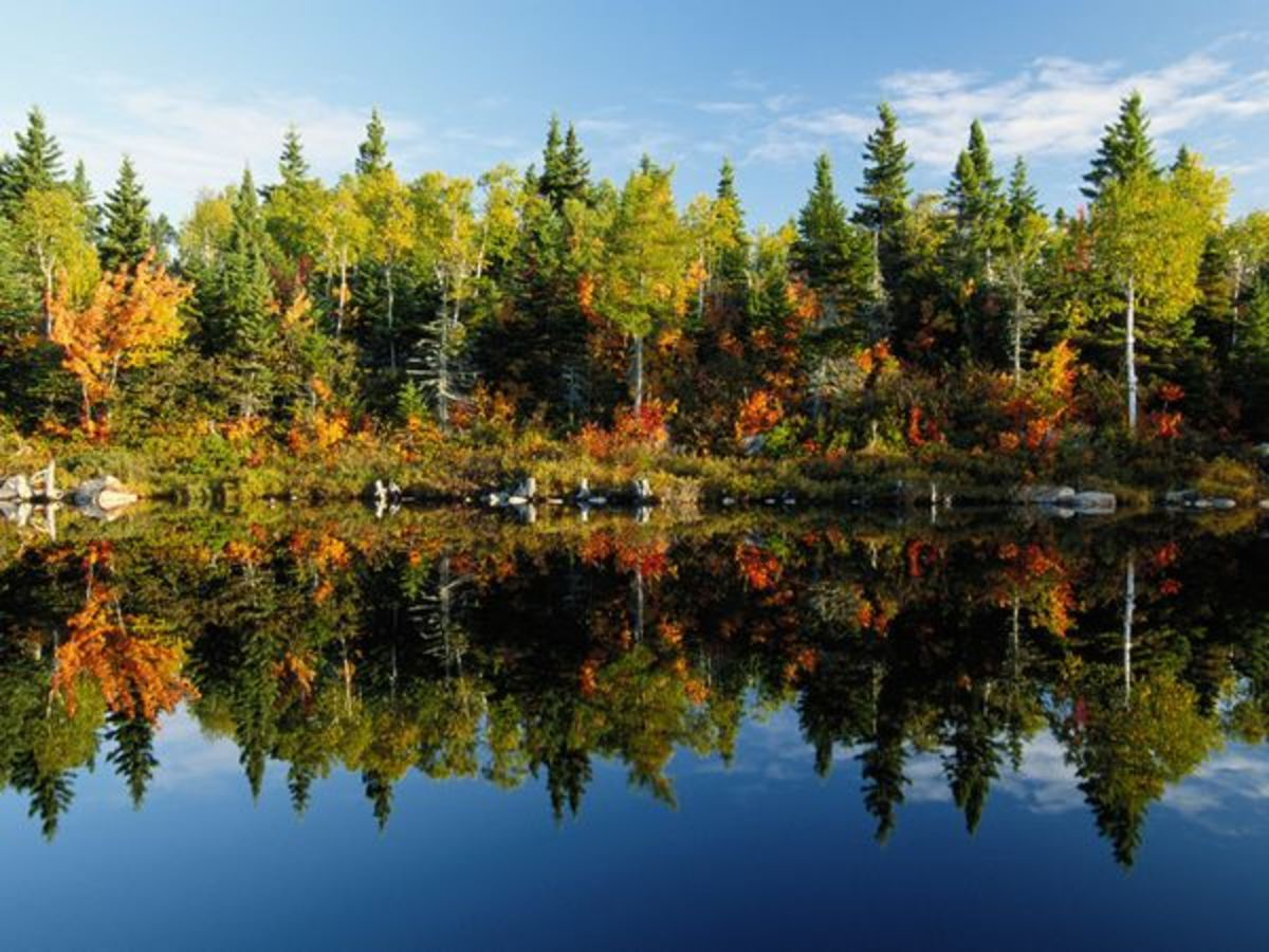 Photograph by Raymond Gehman:  A still lake reflects sky and trees in Canada.  http://photography.nationalgeographic.com
