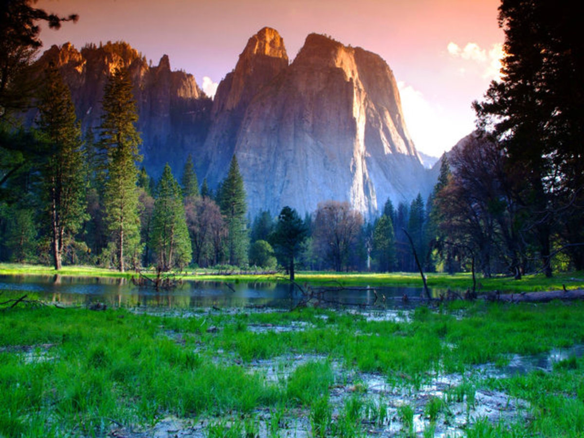 Daniel Burgin captures the Yosemite impressive mountains over a marsh formed by the Merced river, nearby the Yosemite Lodge. This picture was taken from the Northside Drive road in the evening.  http://www.edenpics.com
