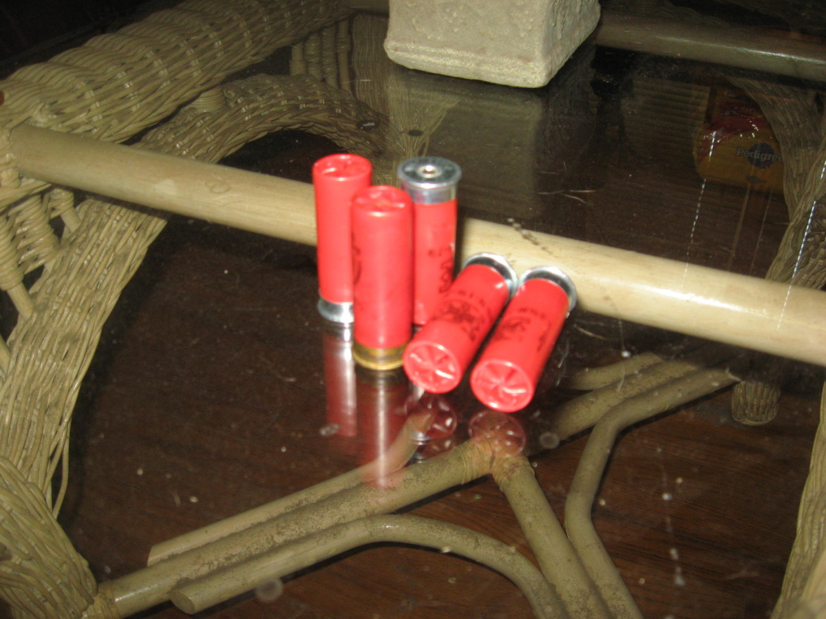 Shotgun shells scatter, so exact aim isn't necessary for Home Defense.