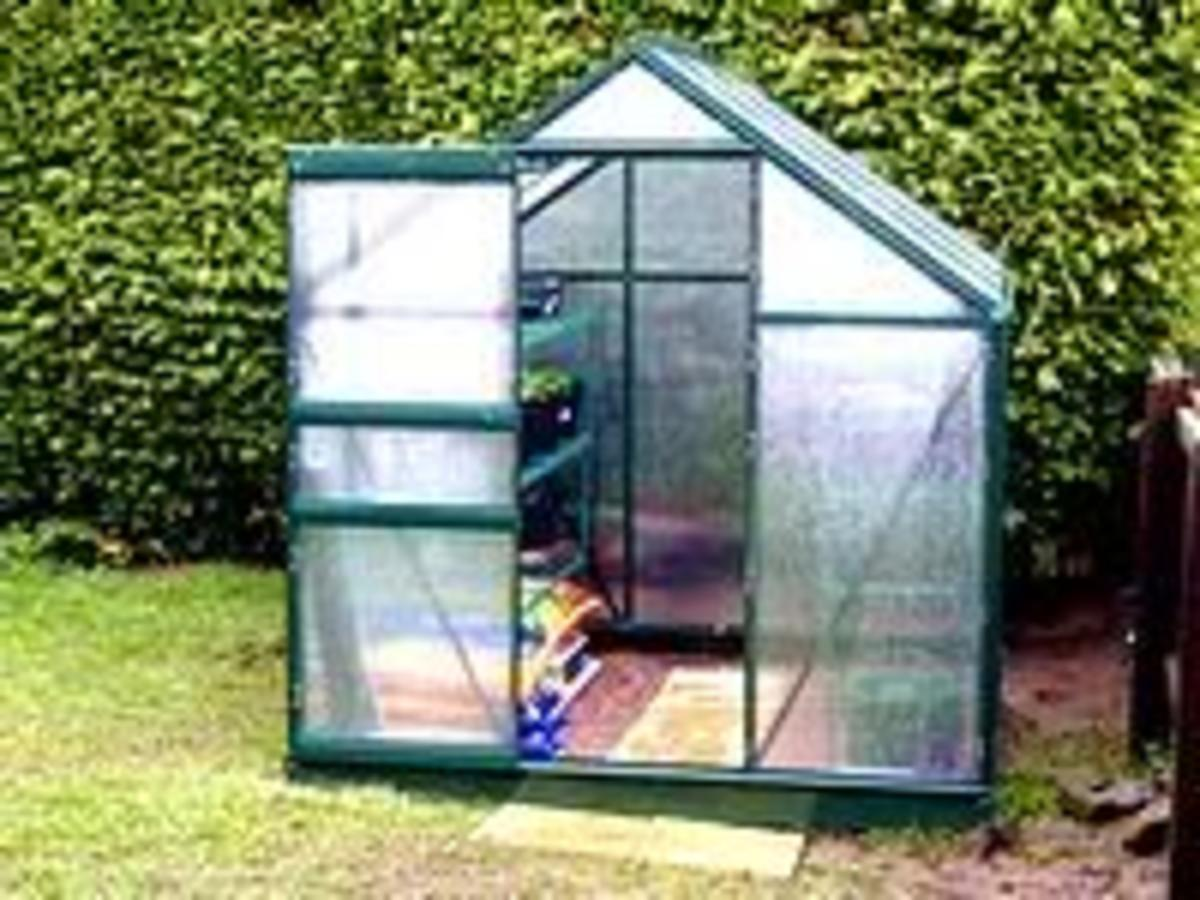 backyard greenhouse for the home gardener