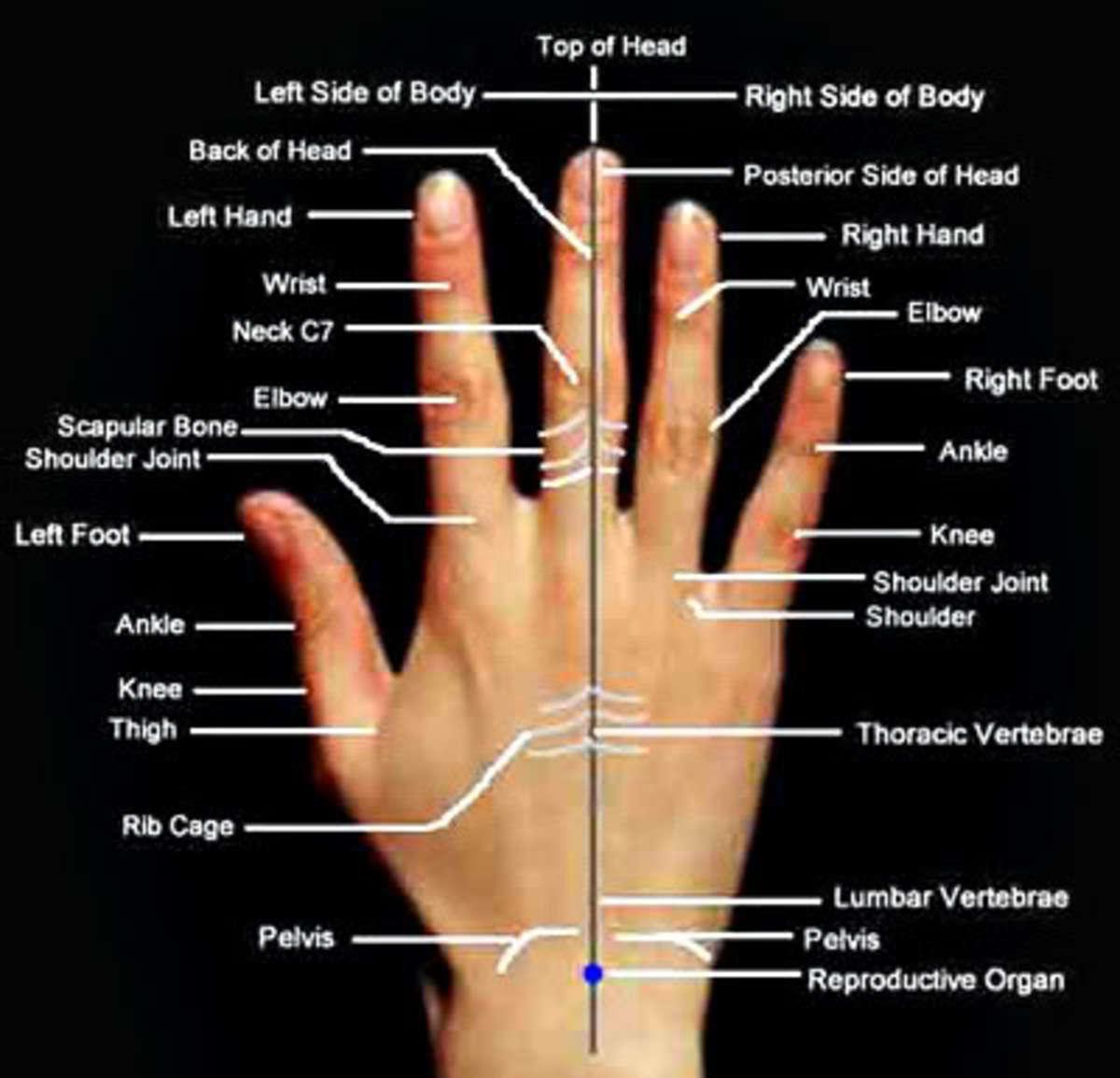 acupuncture-vs-acupressure