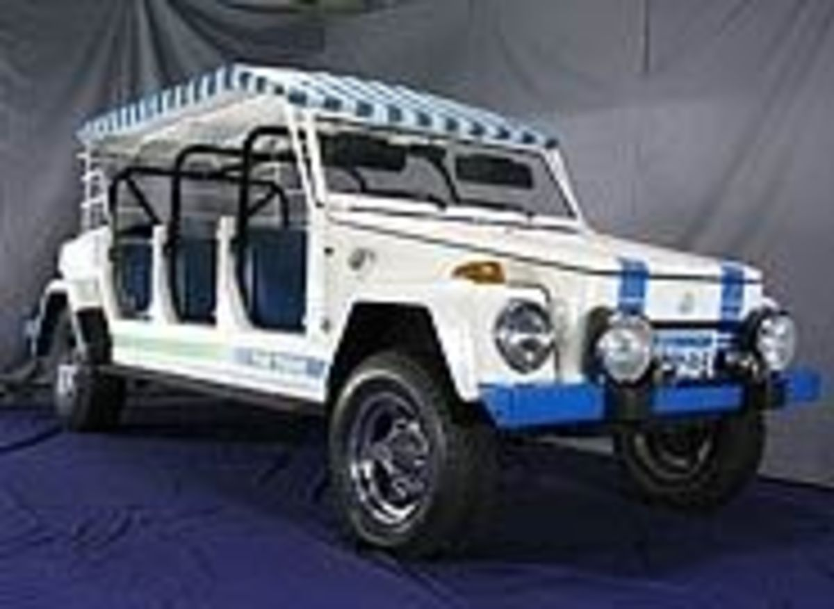Safari Grande: Acapulco VW Thing Limousine