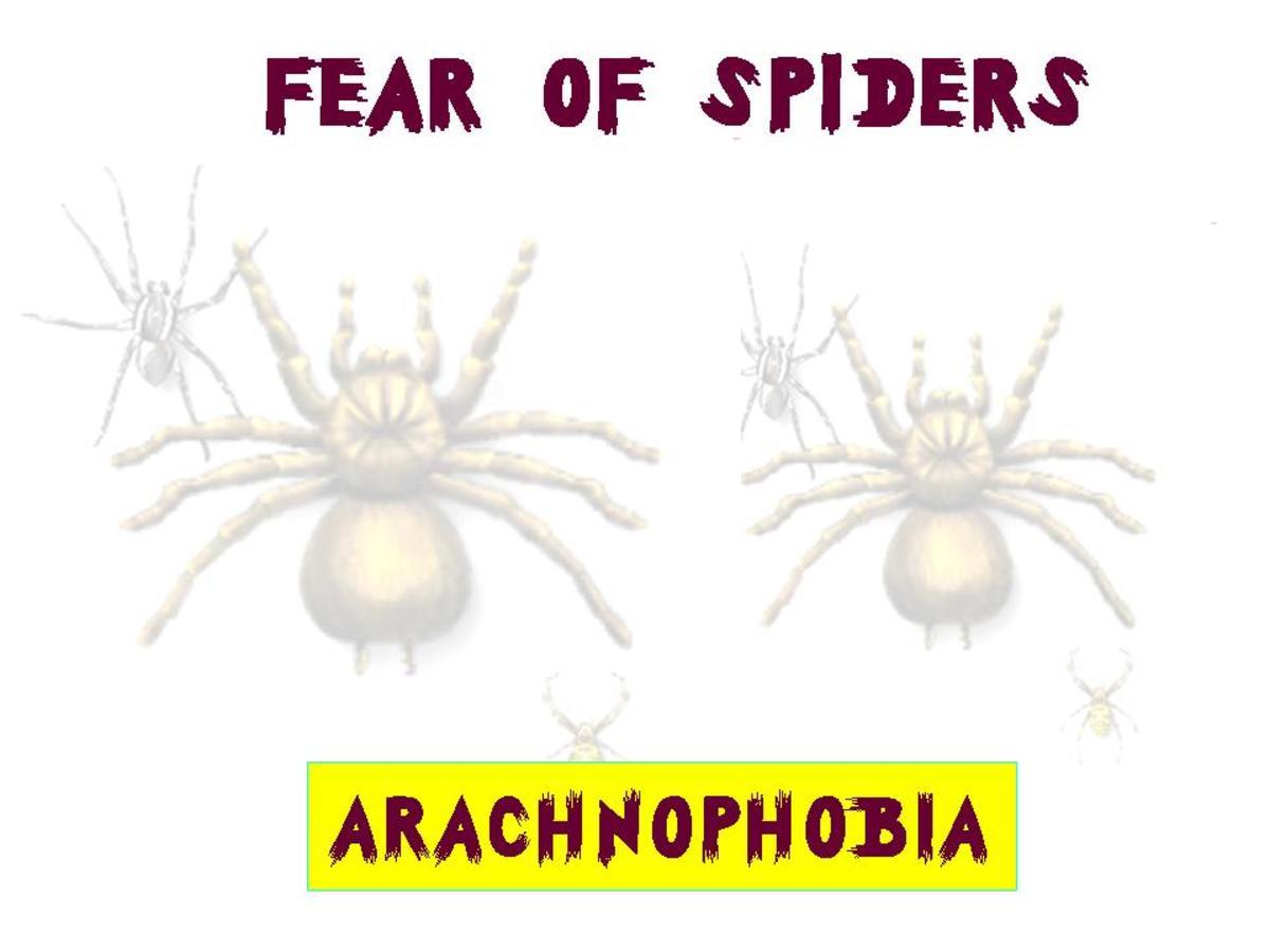 List of Animal Phobias
