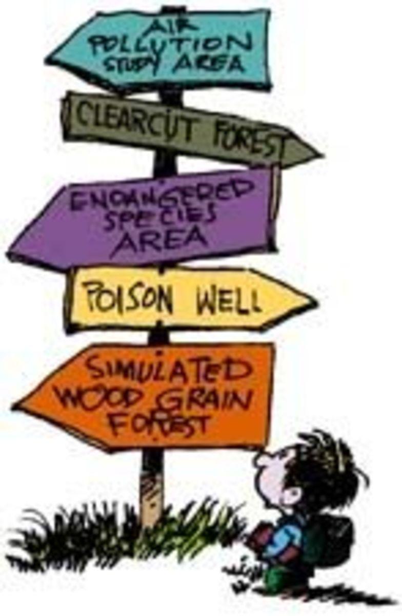provision--vision