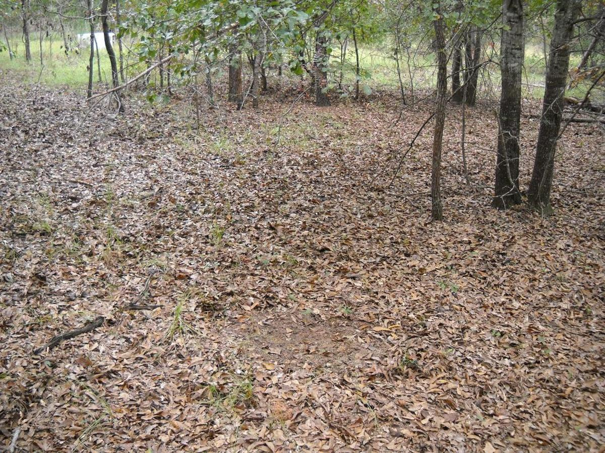 The secret to hunting whitetail deer scrapes