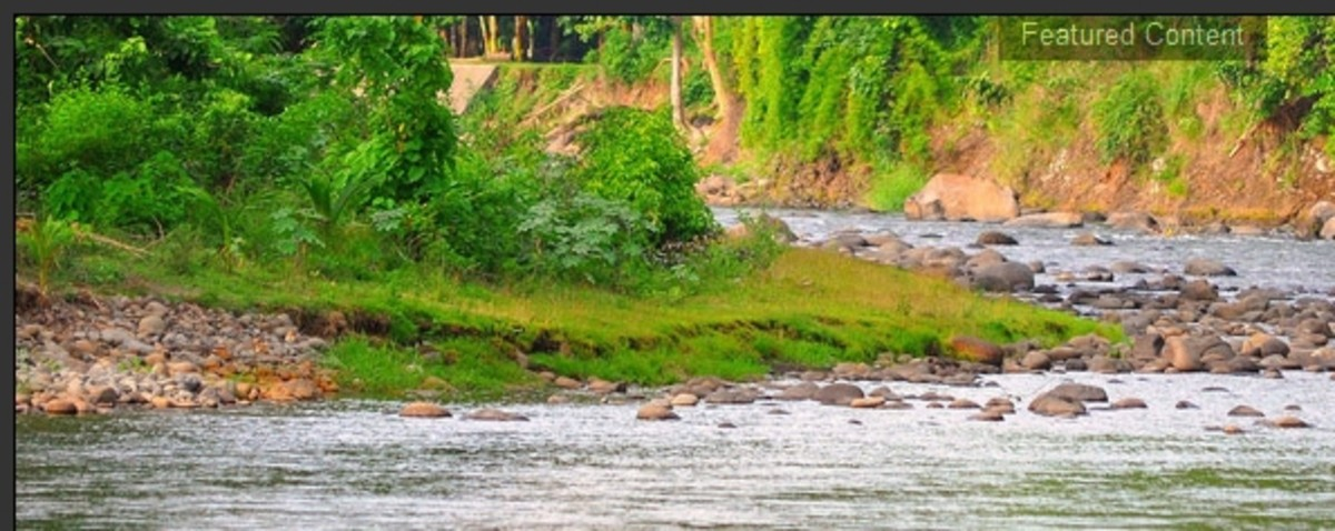 Another picture from http://www.savetaguibowatershed.com/