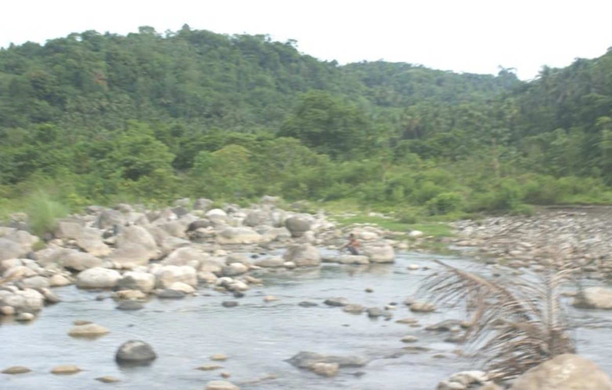 An image of the water that flows out of the watershed (Courtesy of: http://caraga.neda.gov.ph/images/taguibo2.jpg)