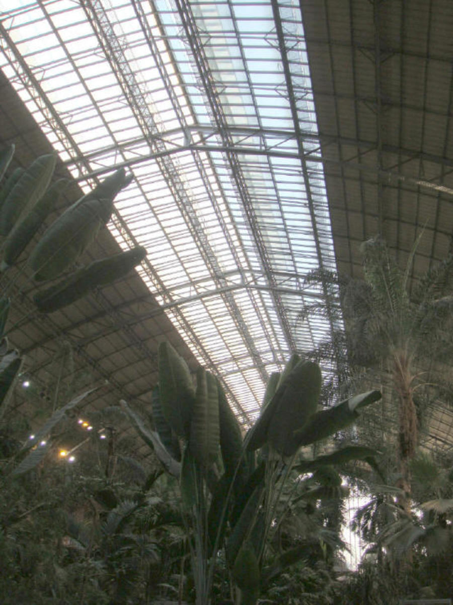 Don't forget to look up at the glass roof. Its the original one from 1851, it needed repairs though.