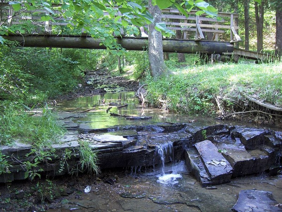 Bee Lick Creek in Jefferson Memorial Forest. Central Kentucky features many parks of all sizes, lakes, and outdoor recreation facilities.