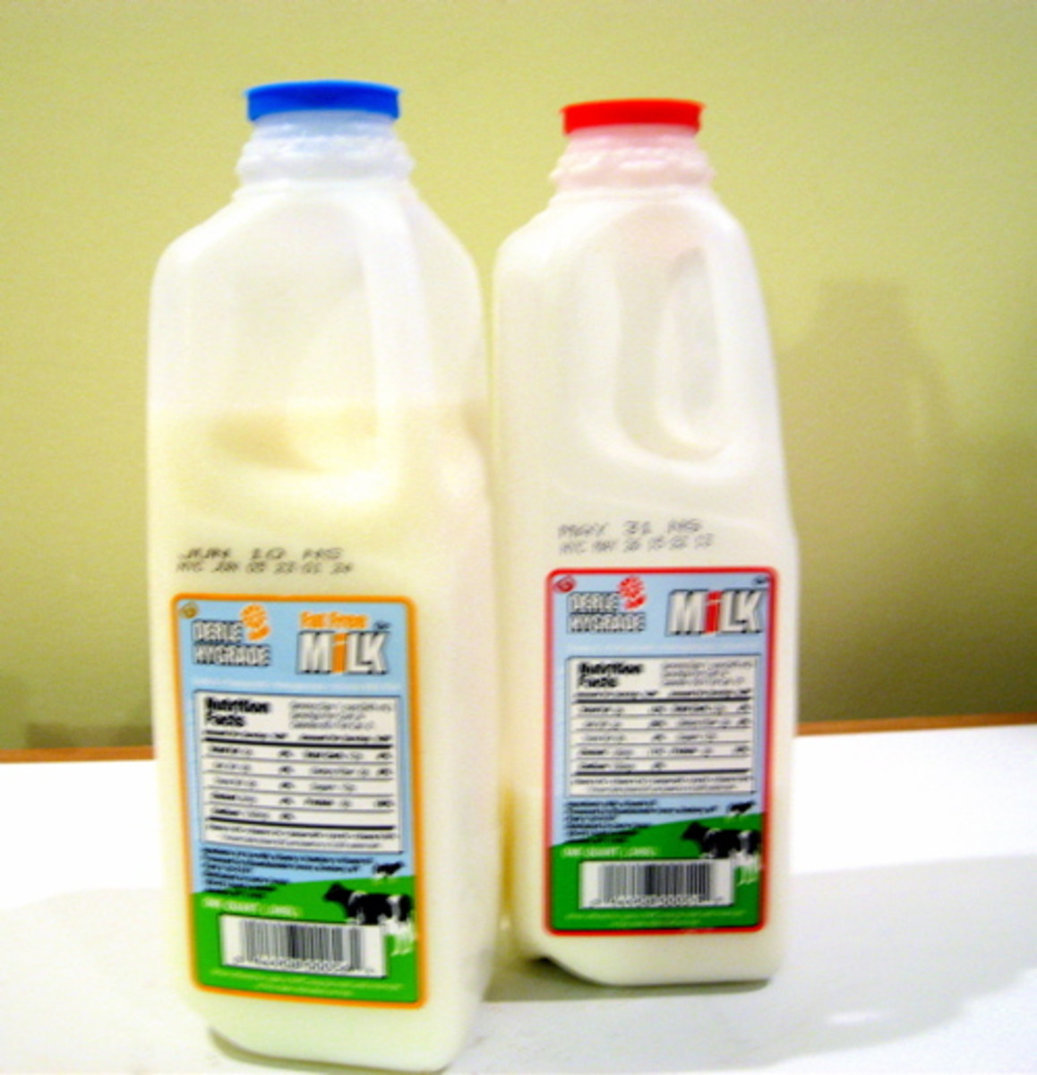 Milk cartons stamped with NYC sell by dates / Photo by E. A. Wright
