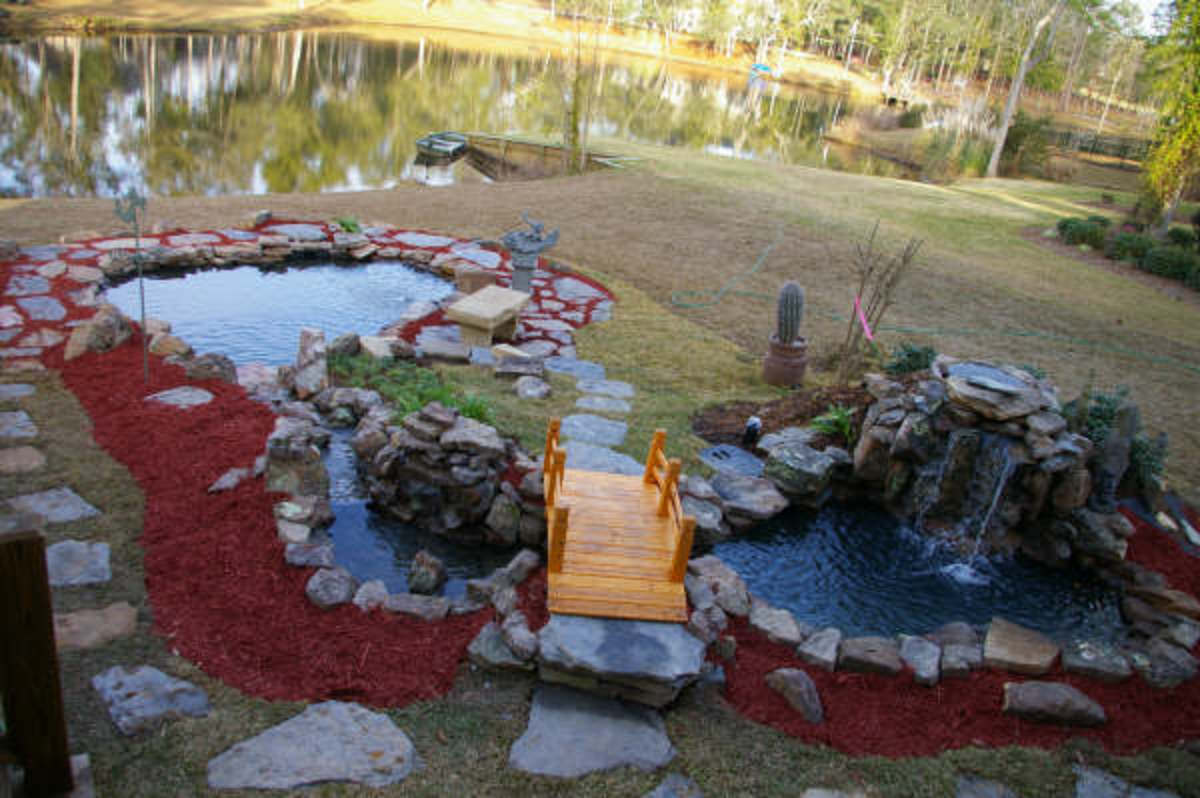 Koi pond backyard installation