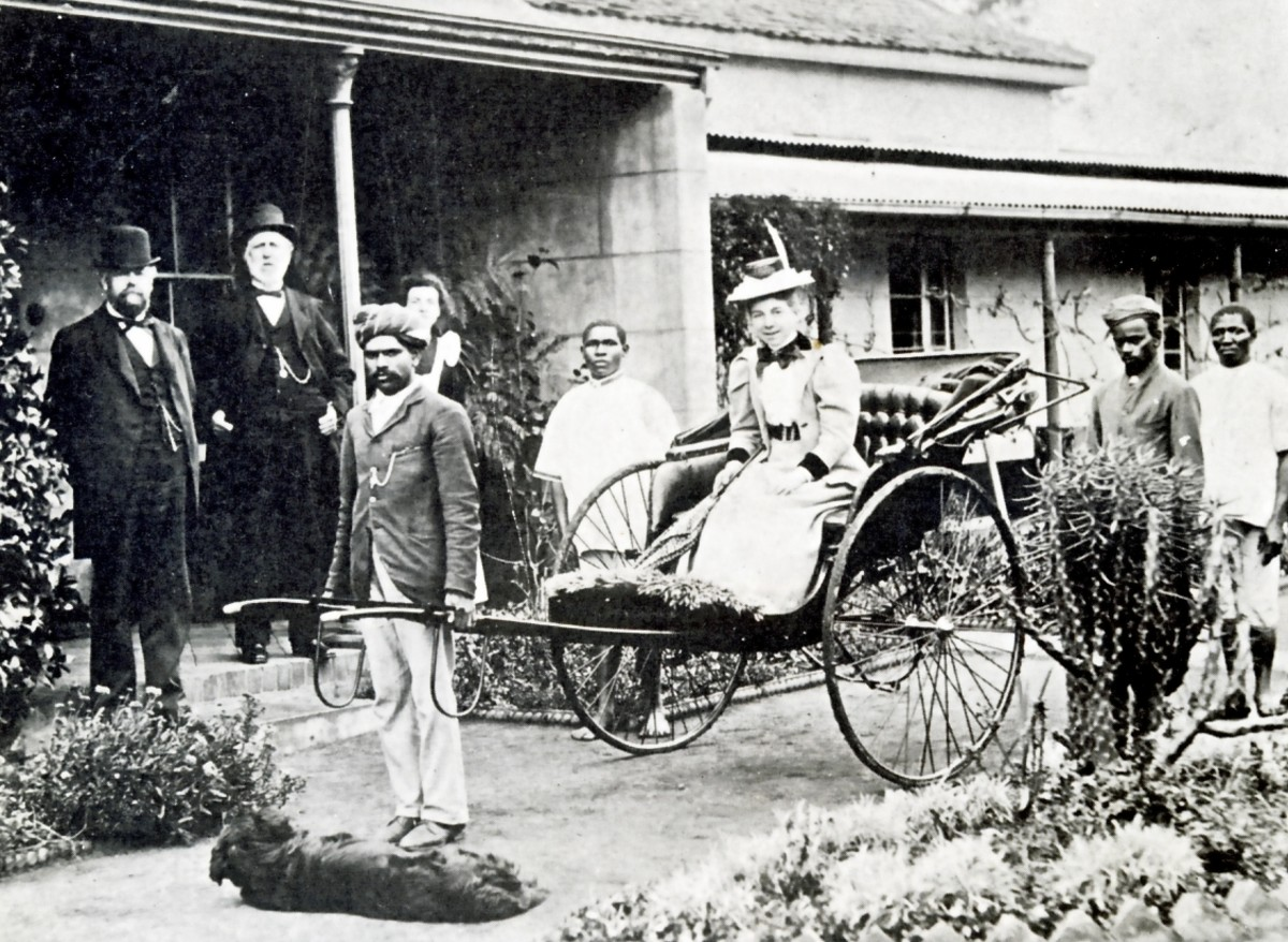 Indian Rickshaw Puller employed by a member of the Legislative Council of Natal - 1890