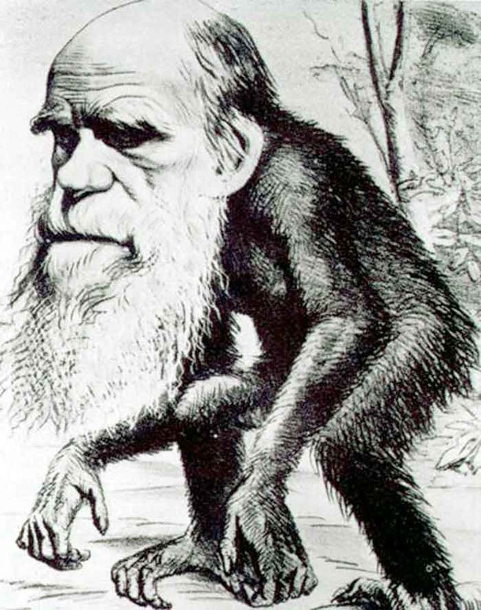 THE GREAT GRANDFATHER OF CHARLES DARWIN