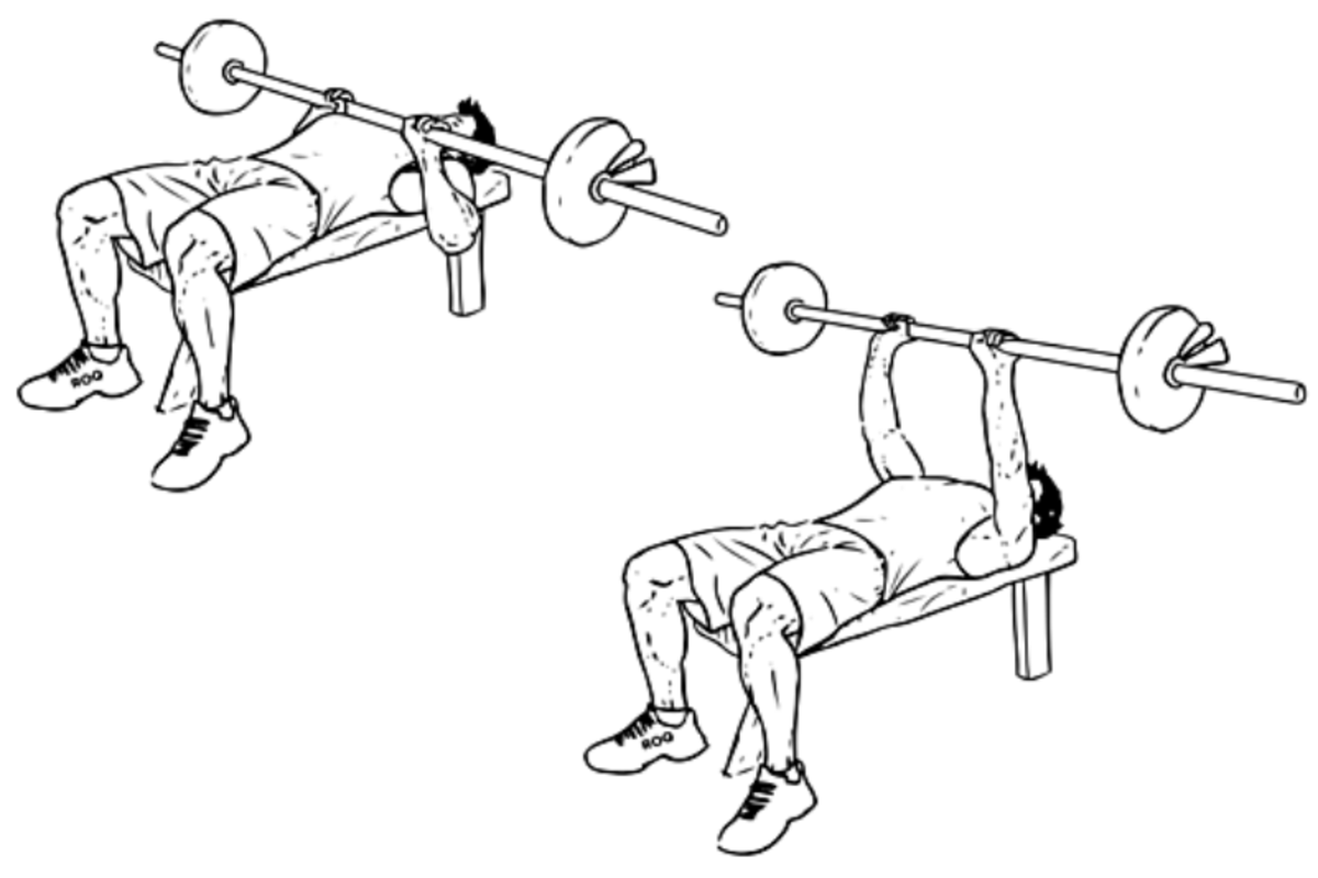 Build Big Arms with the Close Grip Bench Press