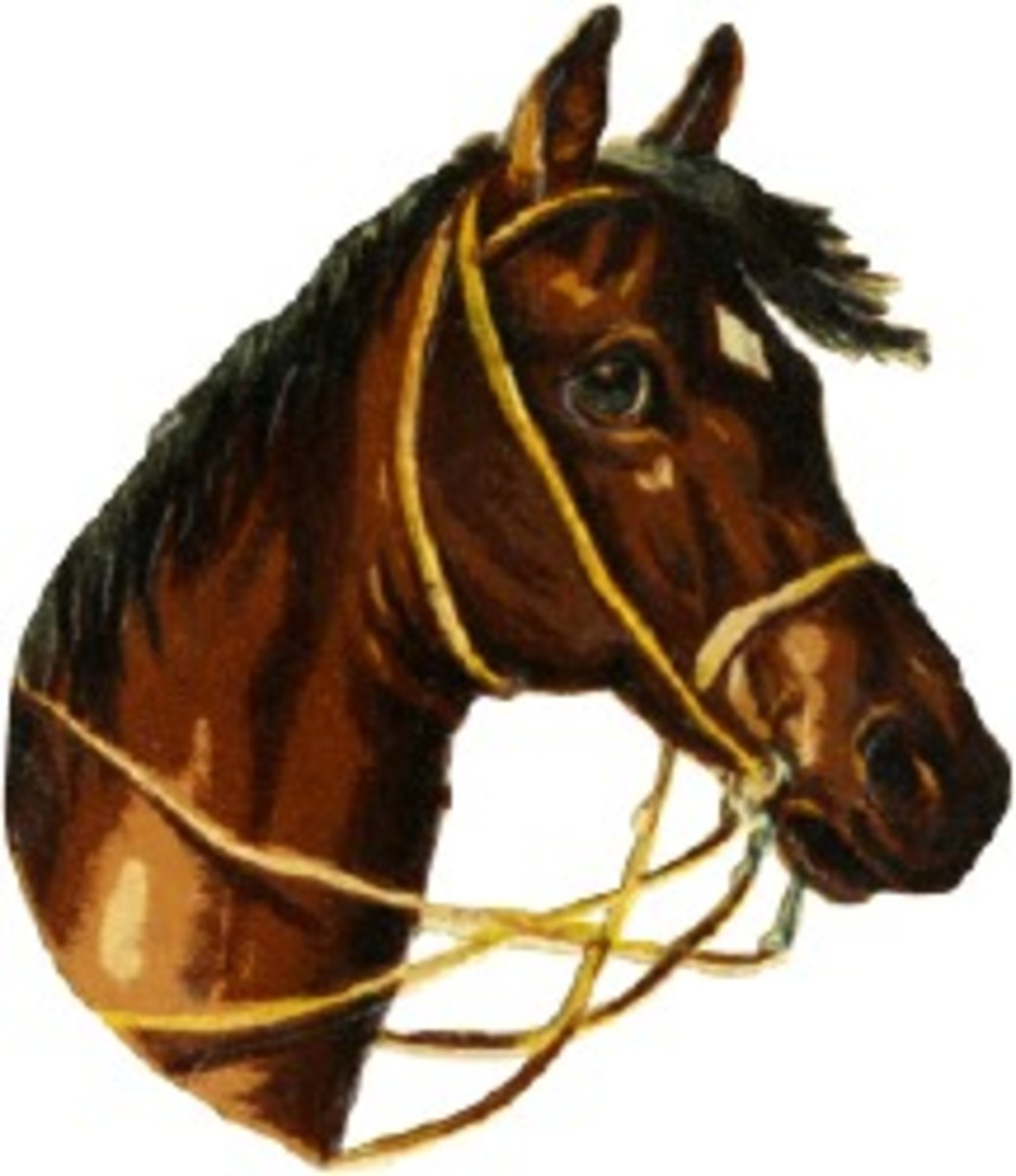 Free Cross Stitch Pattern Brown Horse