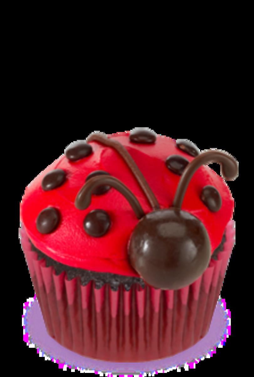 ladybug-party
