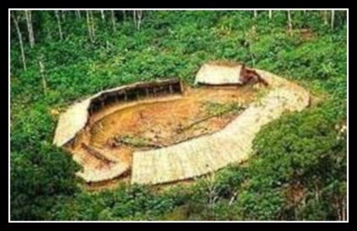 Amazon Rainforest Yanomami Shabano / Yanos