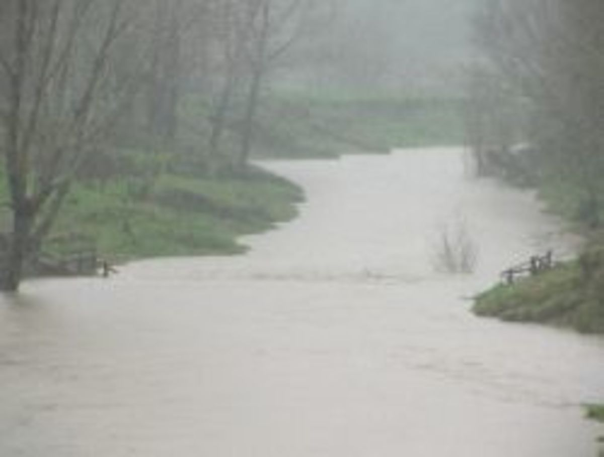 Urenui flooded river, it runs beside our home. Photo Credit - Elsie Hagley