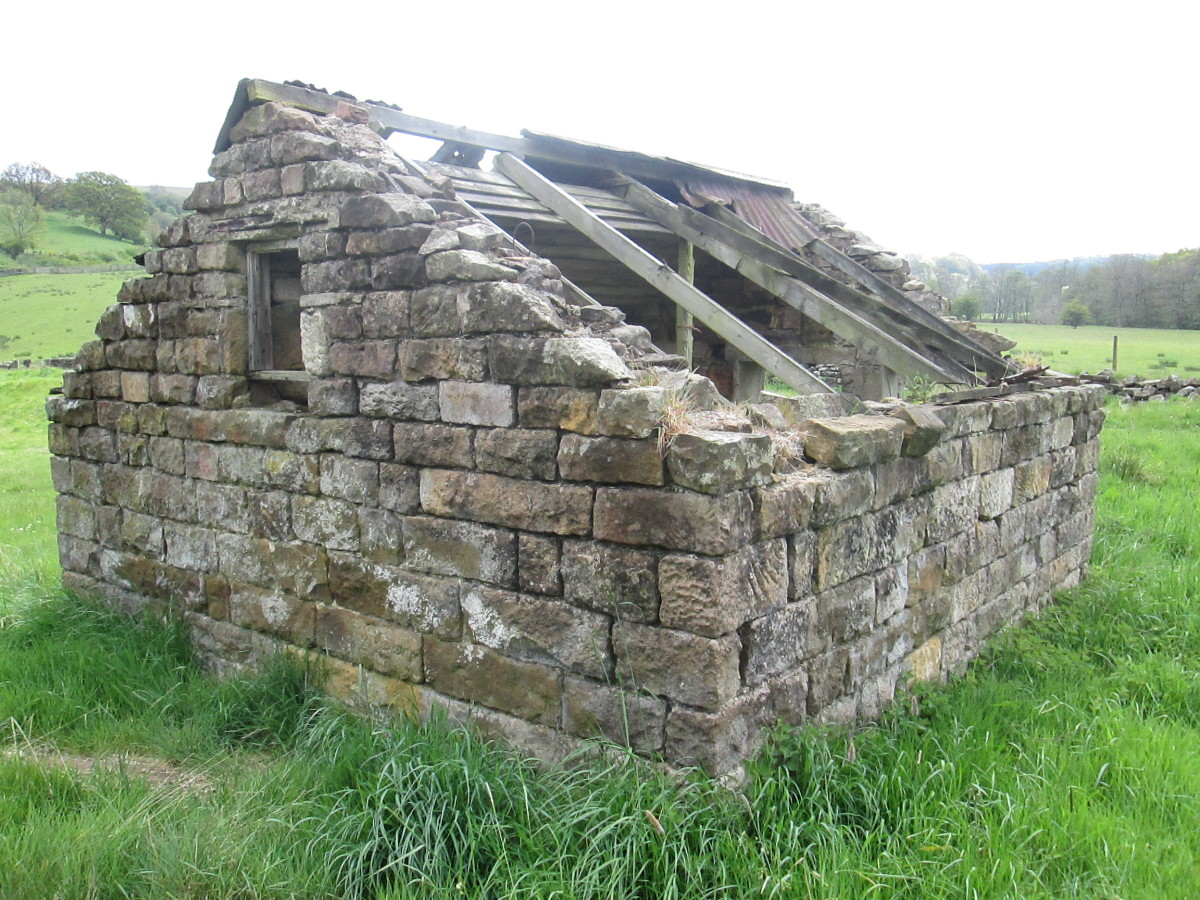 Views around the 'bothy' would be useful, I thought, for a project - scenic backdrop or 3D structure in its own right close to the railway track. The old building might have been there when George Stephenson's navvies first worked on the line
