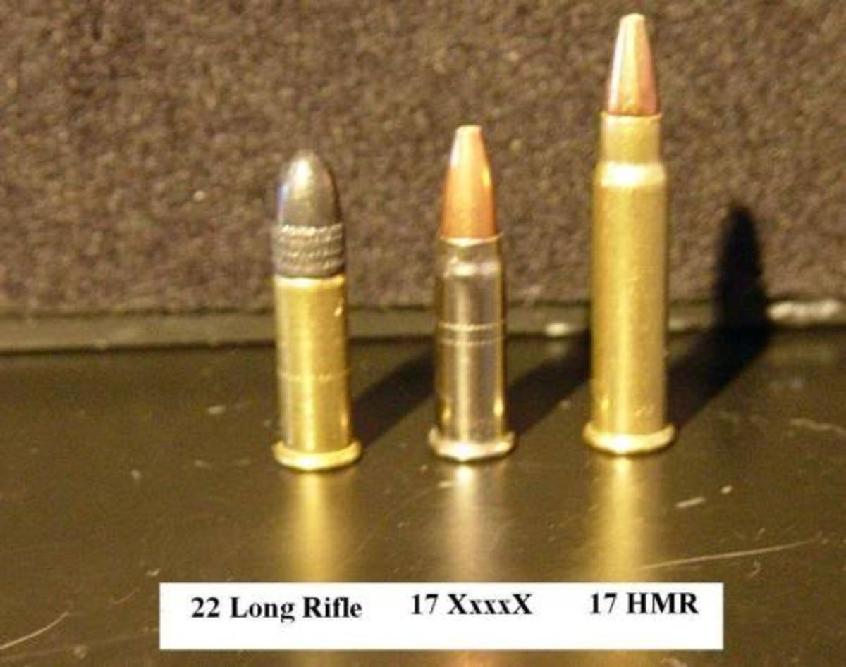 Comparison between .22 LR and .17 HMR