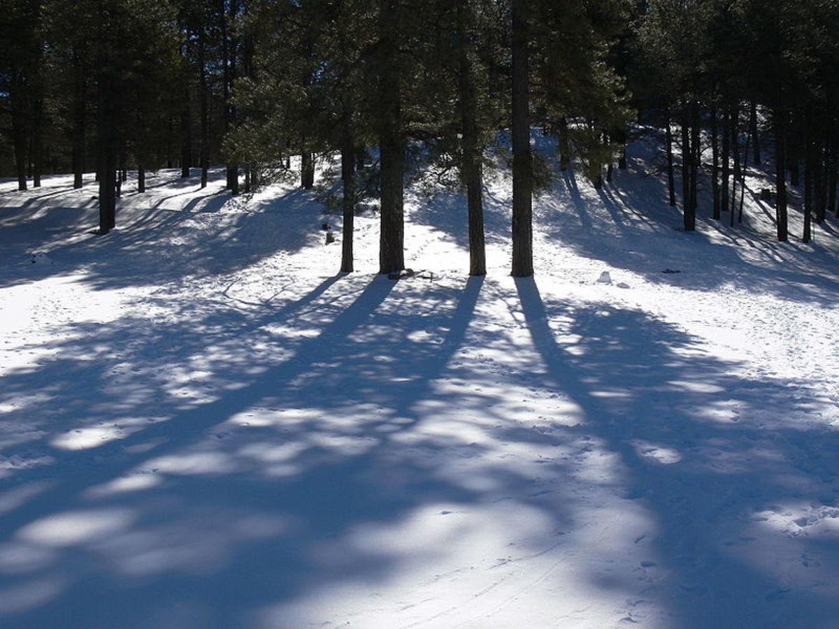 Flagstaff Winterfest