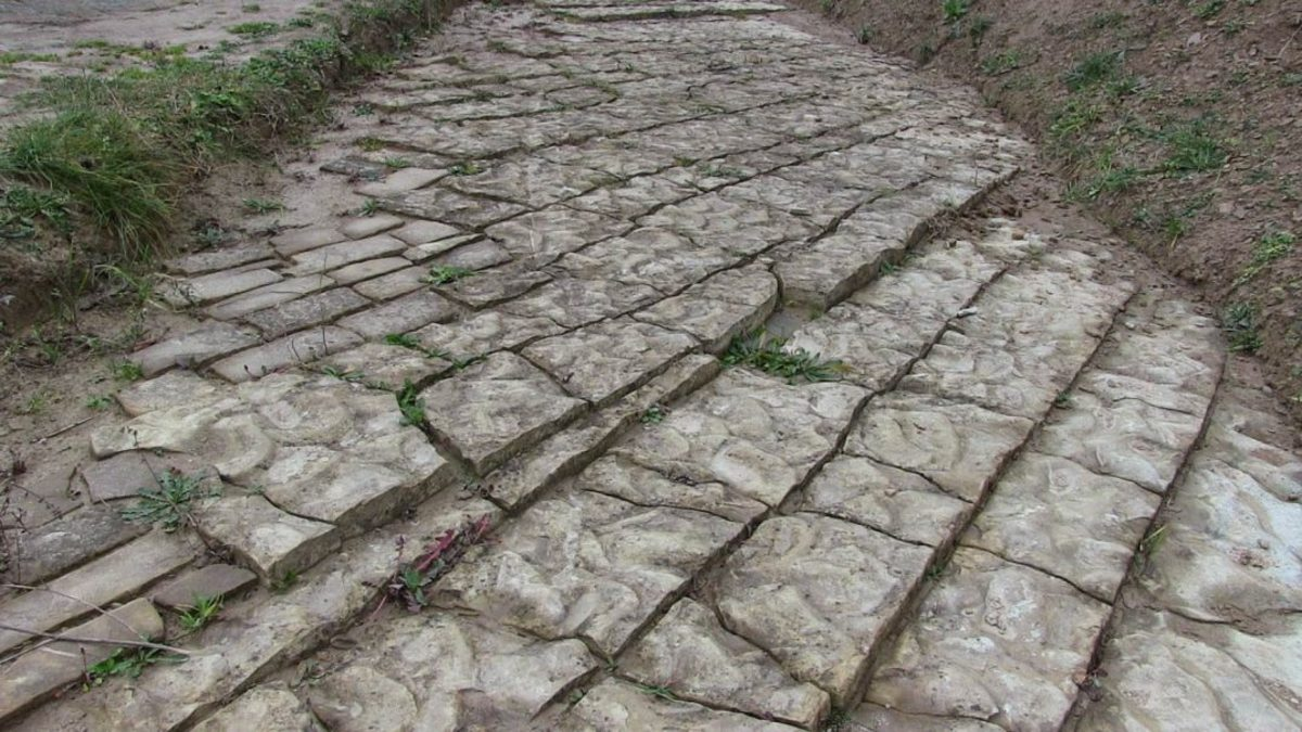 Are these paving stones or carefully cut rocks?
