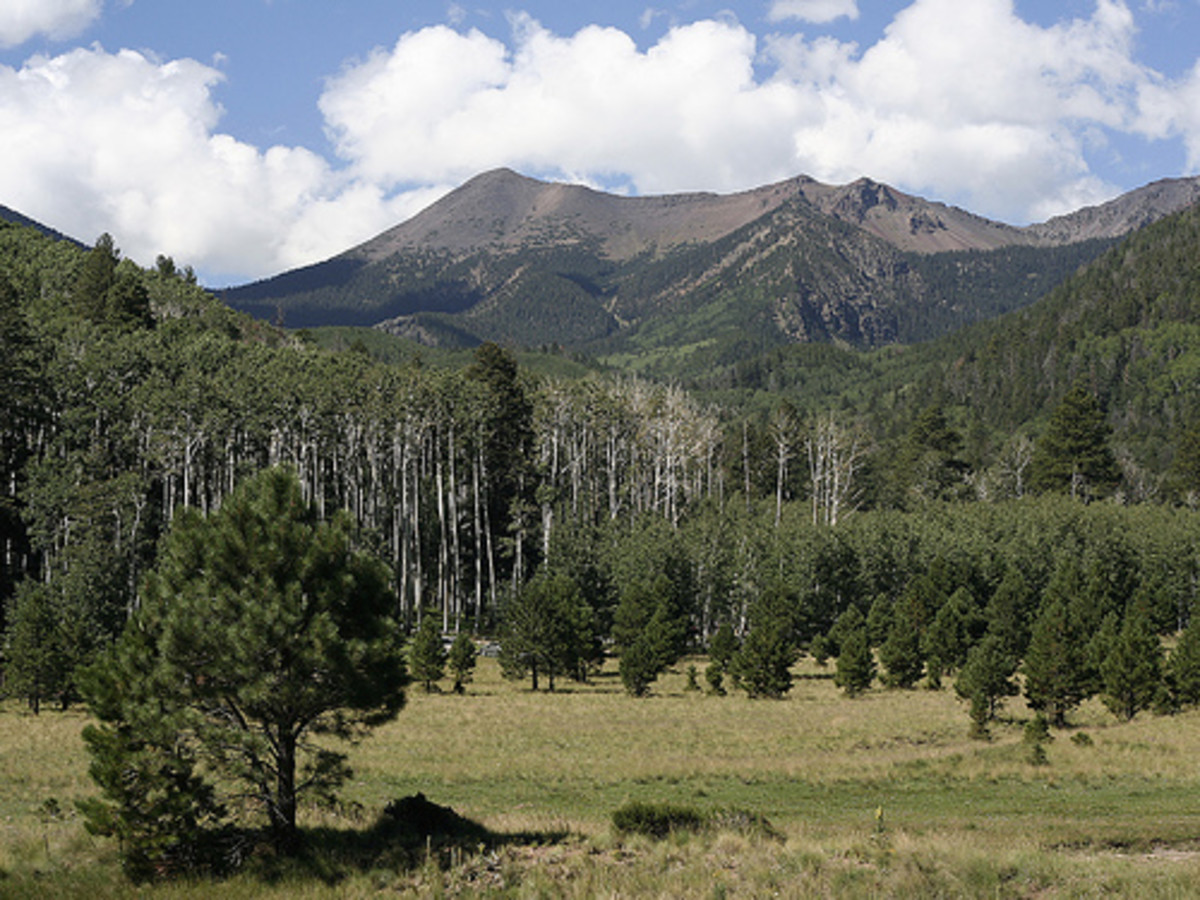 flagstaff-northern-arizona