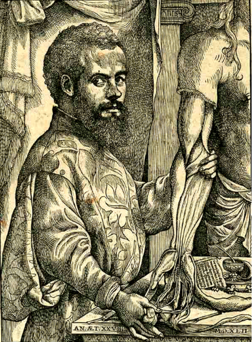 Andreas Vesalius, founder of modern anatomy. Photo courtesy of wikimedia.org.
