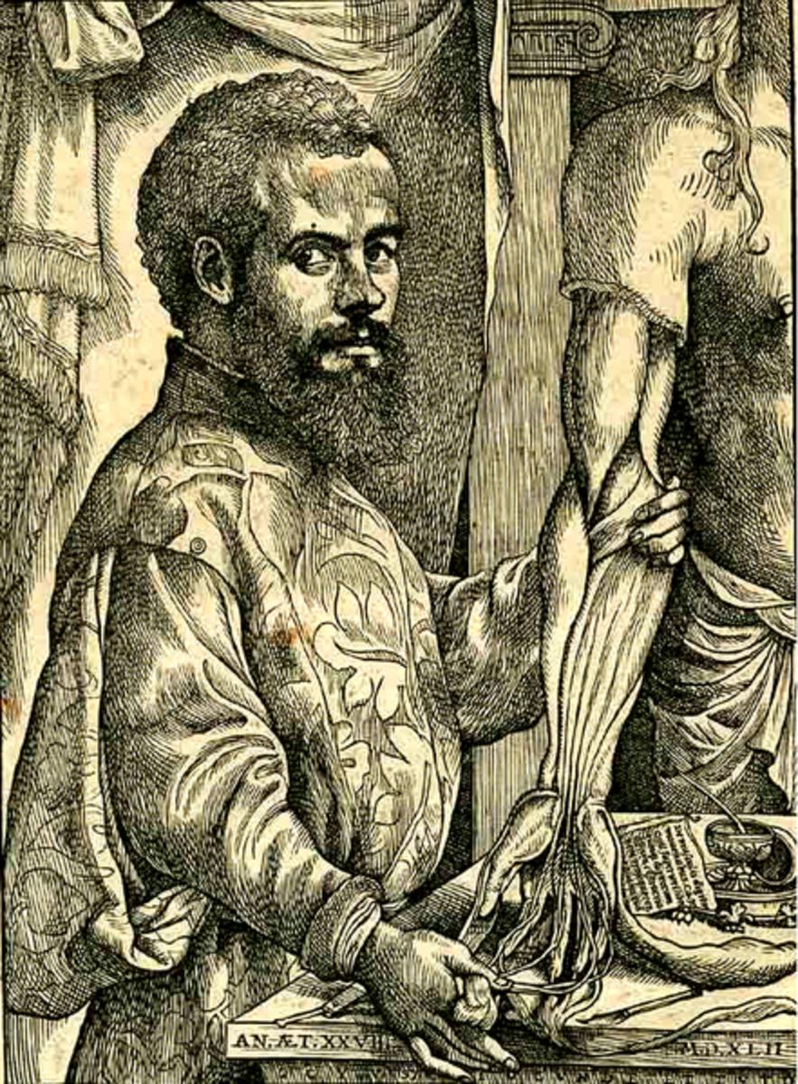 Andreas Vesalius, founder of modern anatomy. Photo courtesy of wikimedia.org.