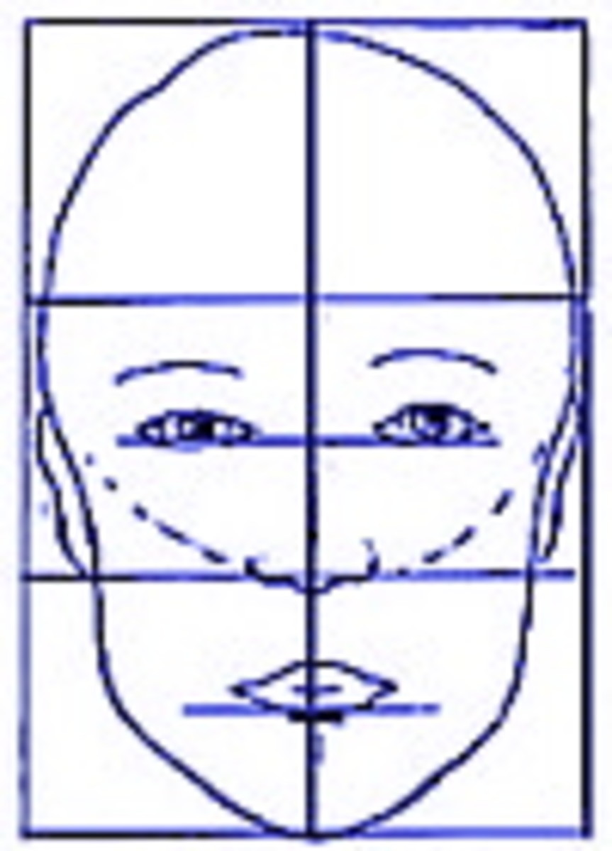 This is a sample of facial proportions.  This is an average head, most people are similar to this, though there can be some differences.  Notice how far down the eyes begin, the space between the nose and lips and the space between the lips and chin.