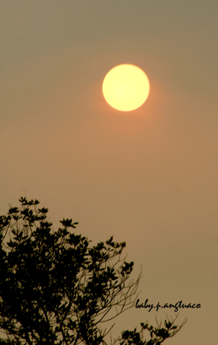 yellow gold sun