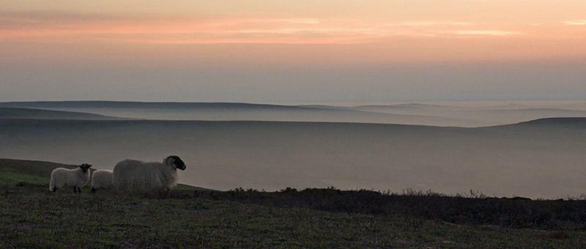 Dusk on the moors.