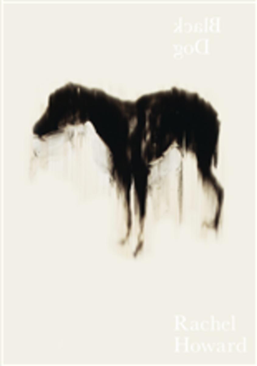 Black Dog by Rachel Howard