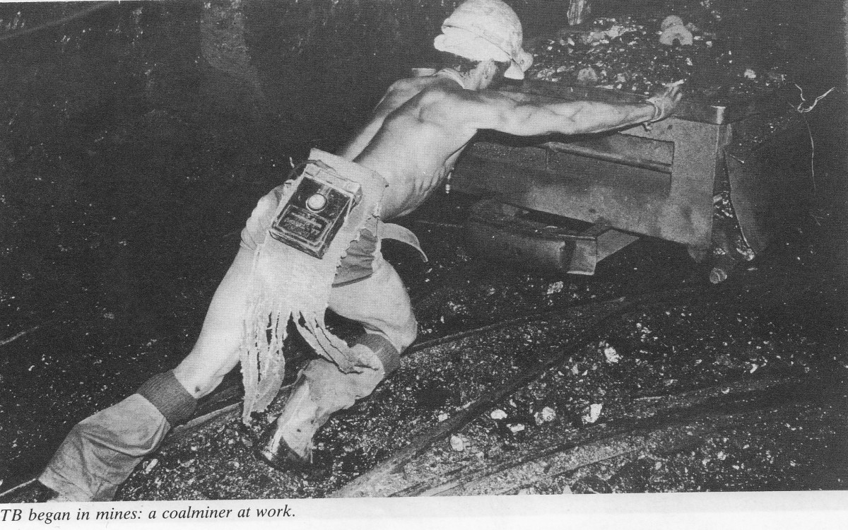 TB began in the mines, and migrant labor was resposible for depopulating the African farms, along with the Hut and dog taxes, for instance,a the Baccilus that was gotten form the other European workers and the unhealthy mine working conditions/diet