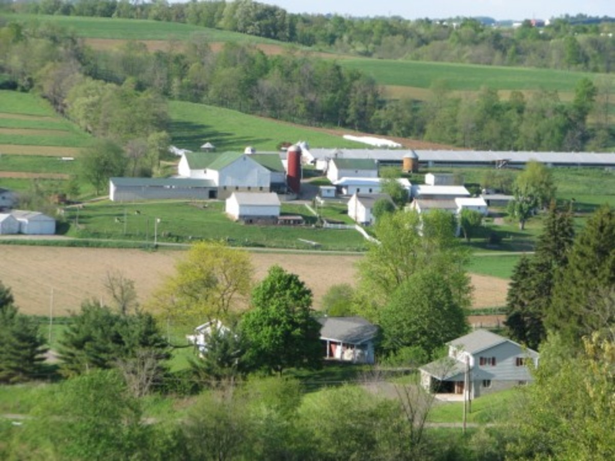 Typical Amish Landscape where factories are not easy to find.