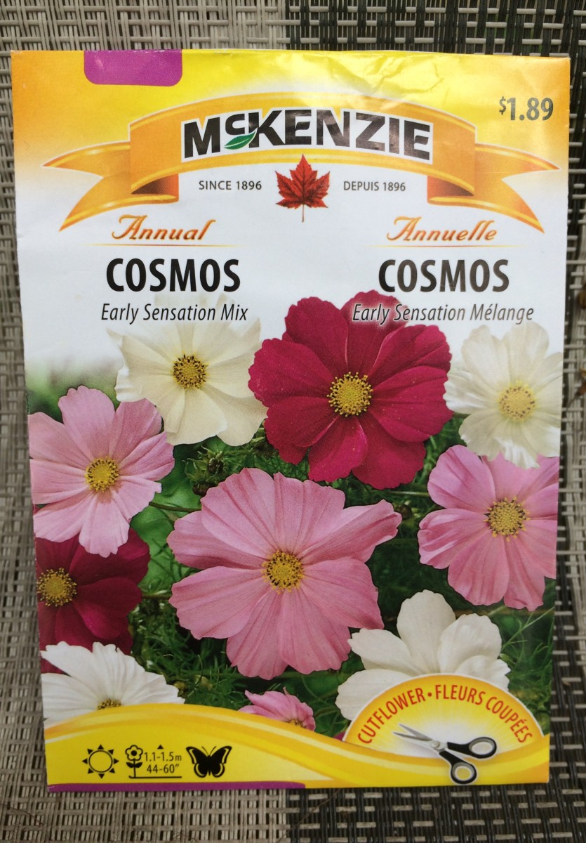 Package of Cosmos seeds