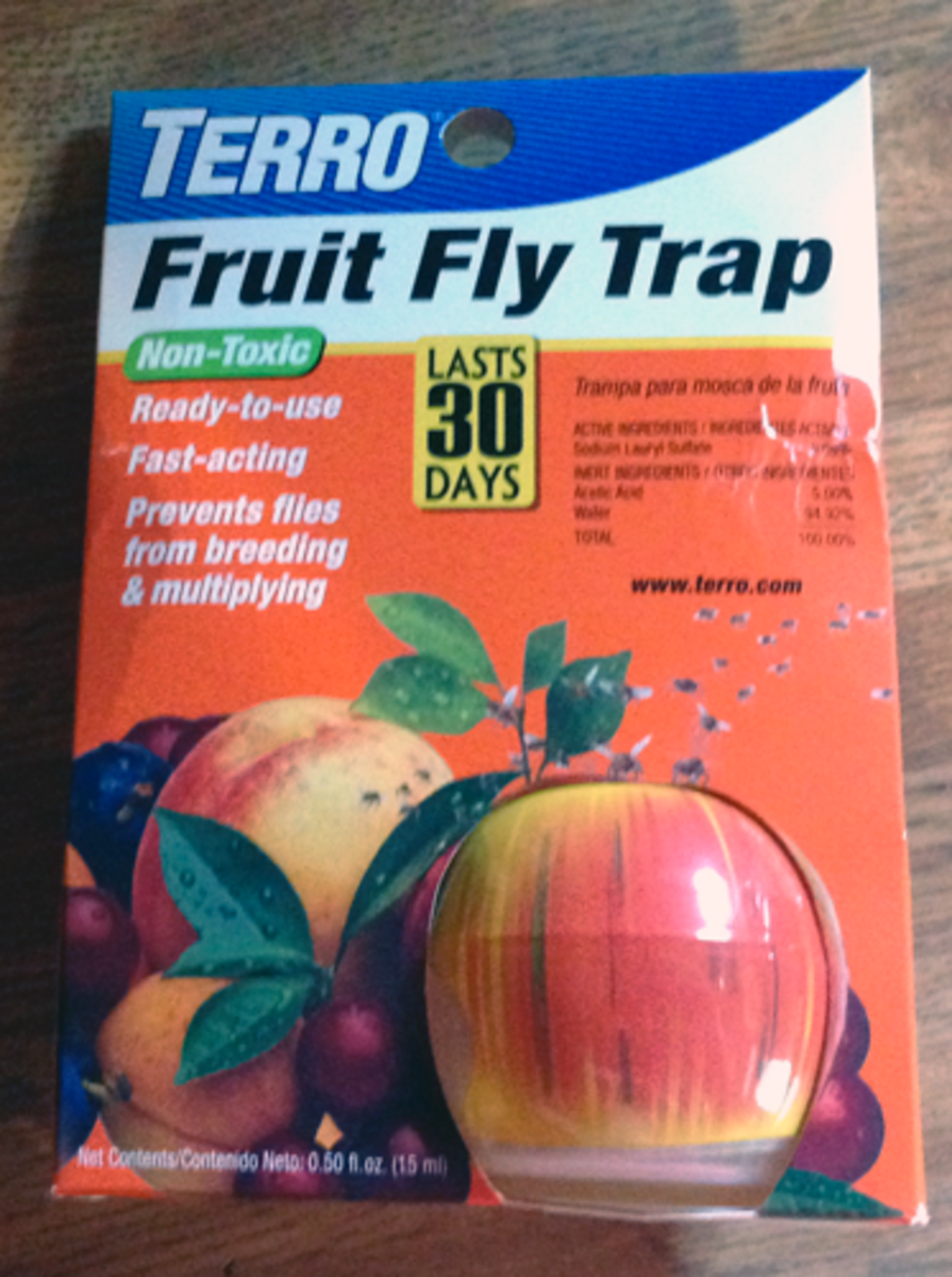Packaging containing one fruit fly trap.