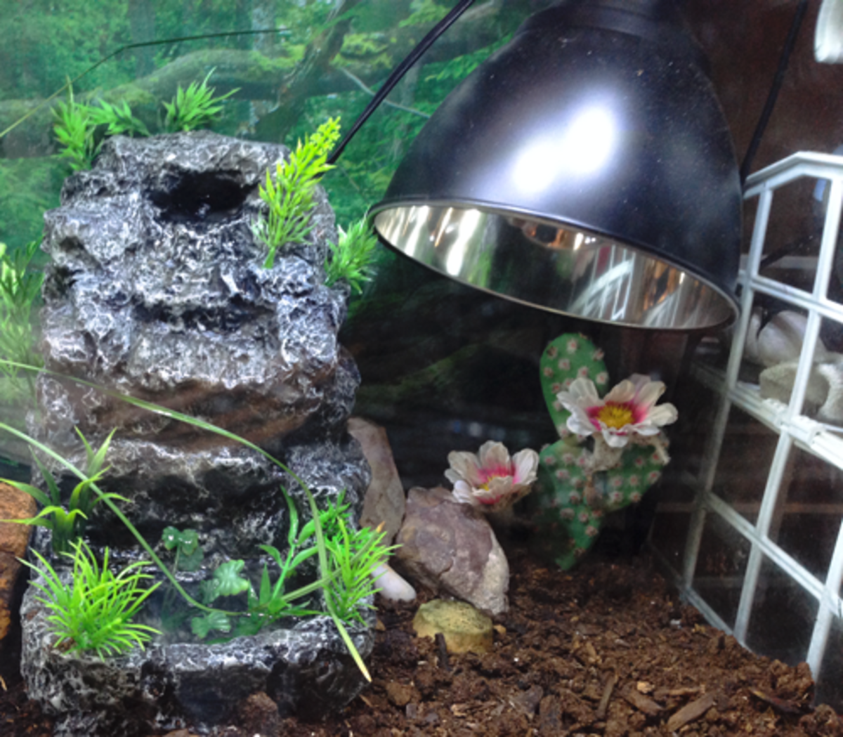 You can use a heat lamp, but I prefer a heat element.  It works just like a light bulb, but it casts no light.  Be careful - they get hot enough to break glass and burn animals!