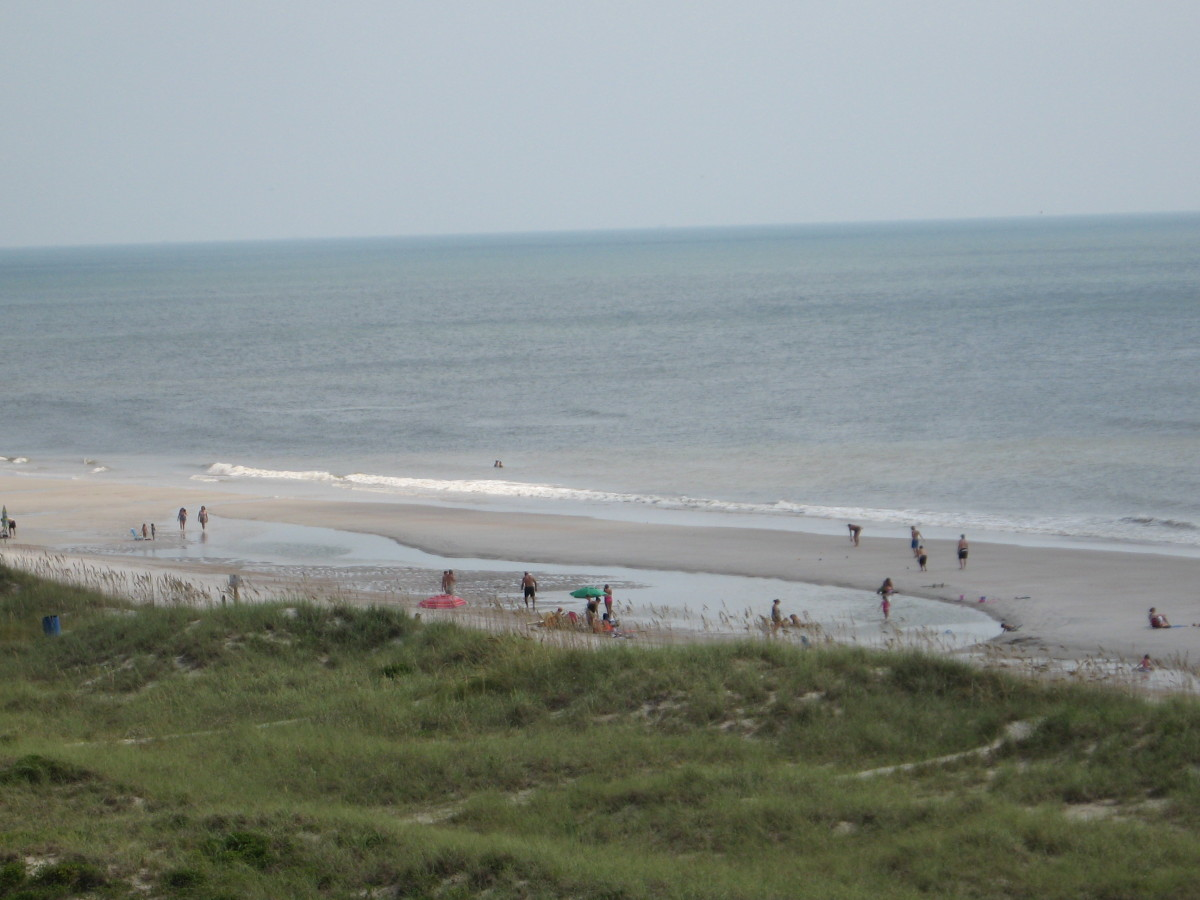 Scenic Drive: Amelia Island to Jacksonville, Fl, with Pics