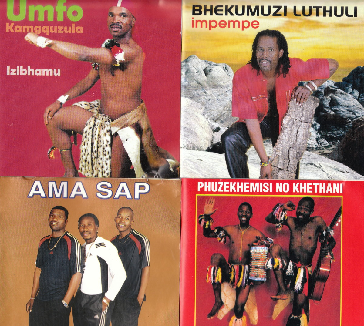 A collection of contemporary Mbaqanga musicians