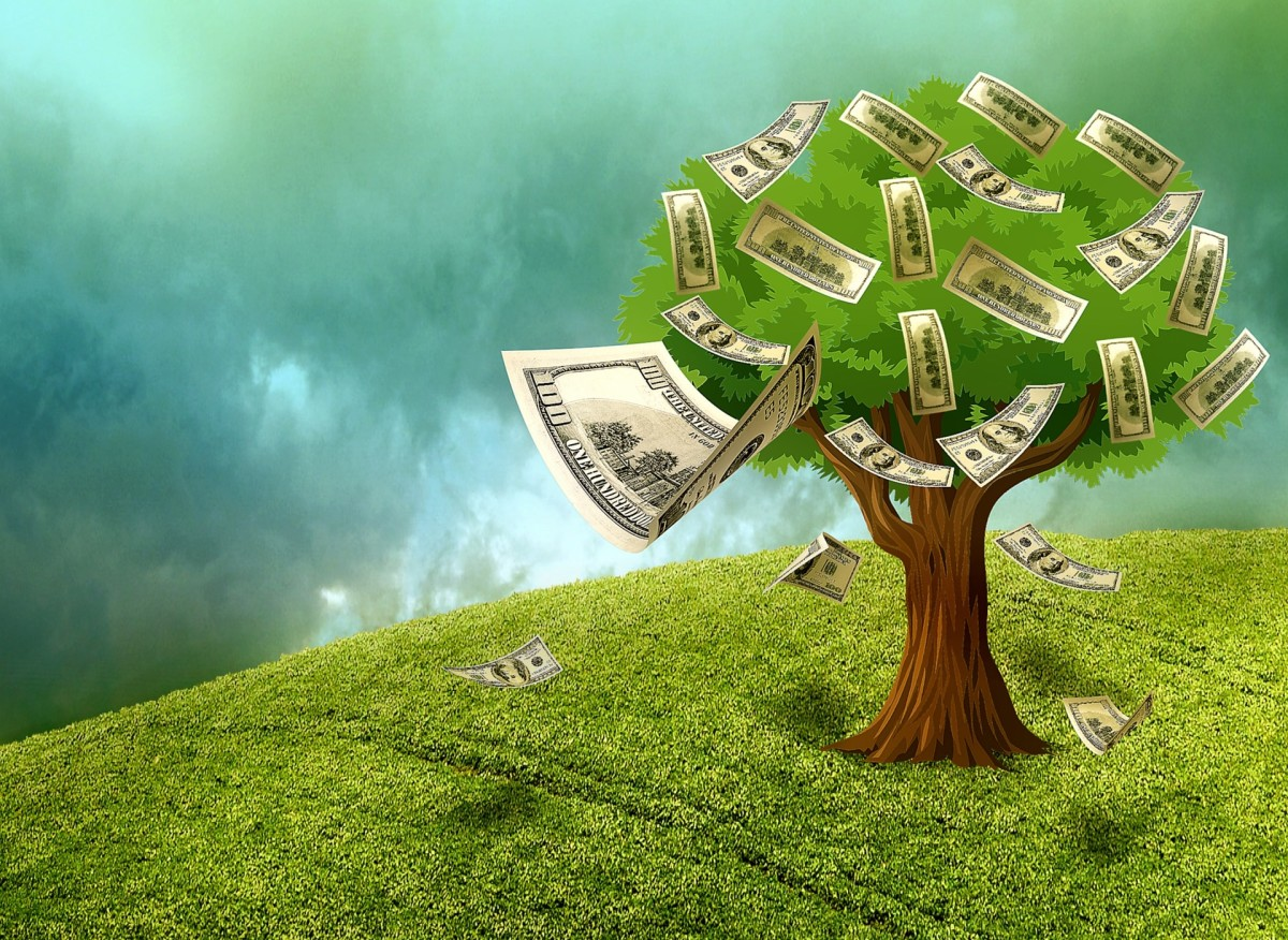 Money doesn't grow on trees, but it can grow in your portfolio when you buy dividend-paying securities and then reinvest them using a DRIP.
