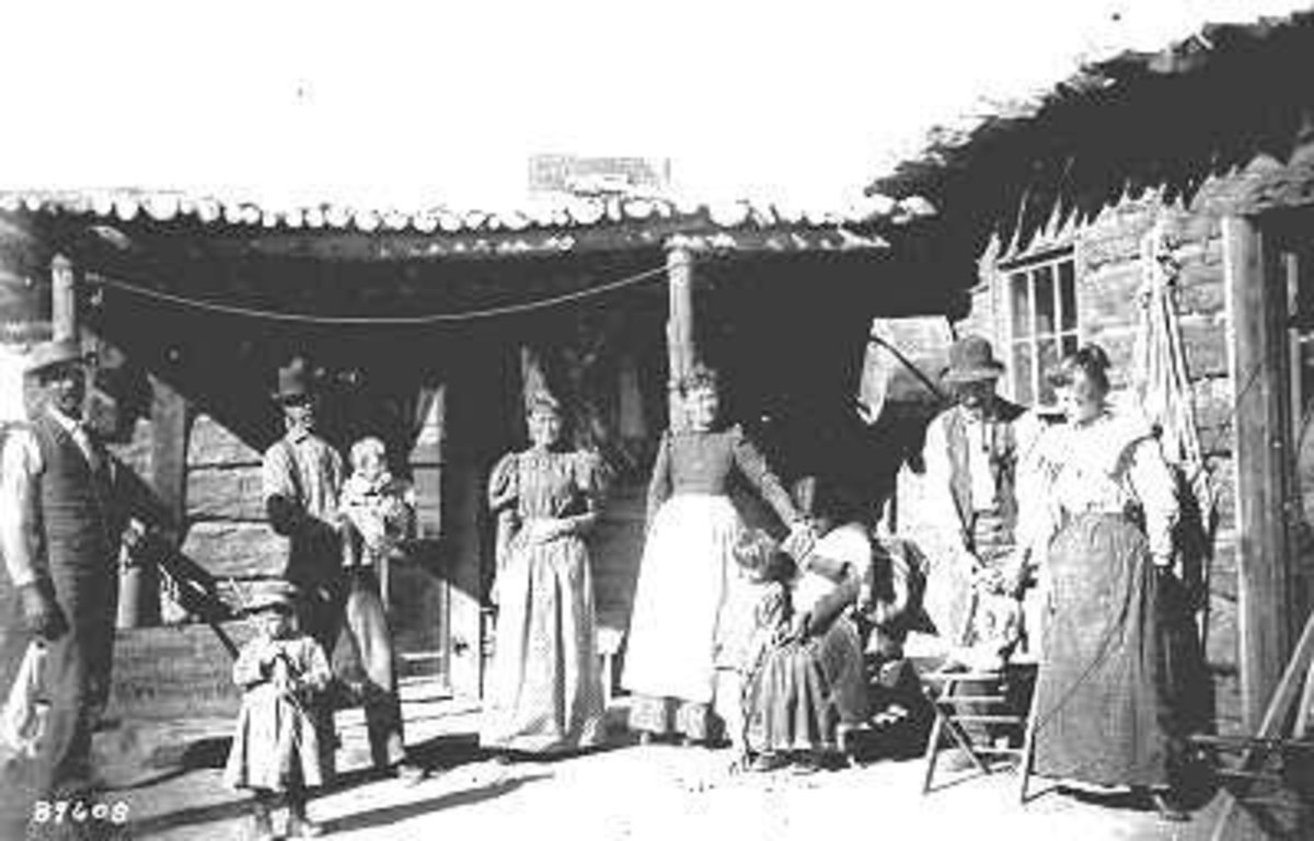 1895 shows the typical extended family including aunts, uncles, all sharing one home until each family could make it on their own.